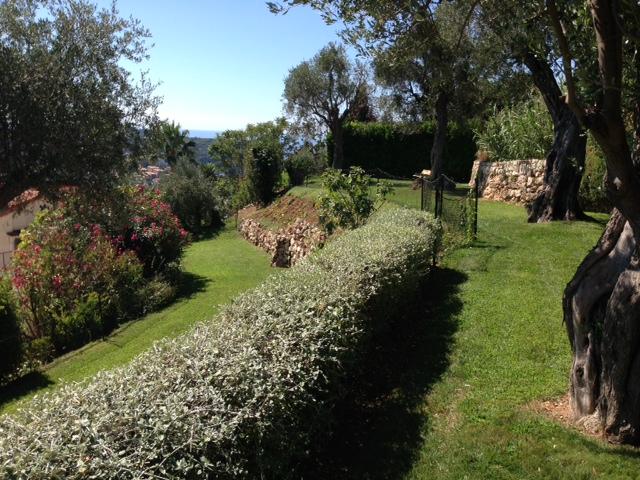 entretien annuel jardin