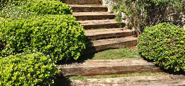 massif et escalier jardin